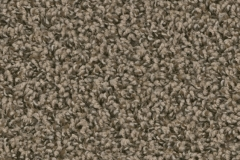 Macadam Floor and Design Carpet Spring Dale